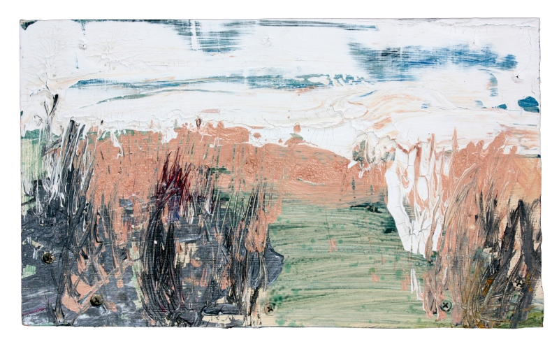 distant landscape (marsh) acrylic and latex paint on wood panel 14 in x 8 3/8 in 2011